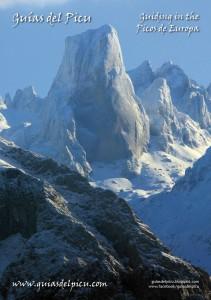 Guias-de-Pico-Anuncio-29-Jan